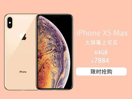 苹果 iPhone XS Max 64G 全网通